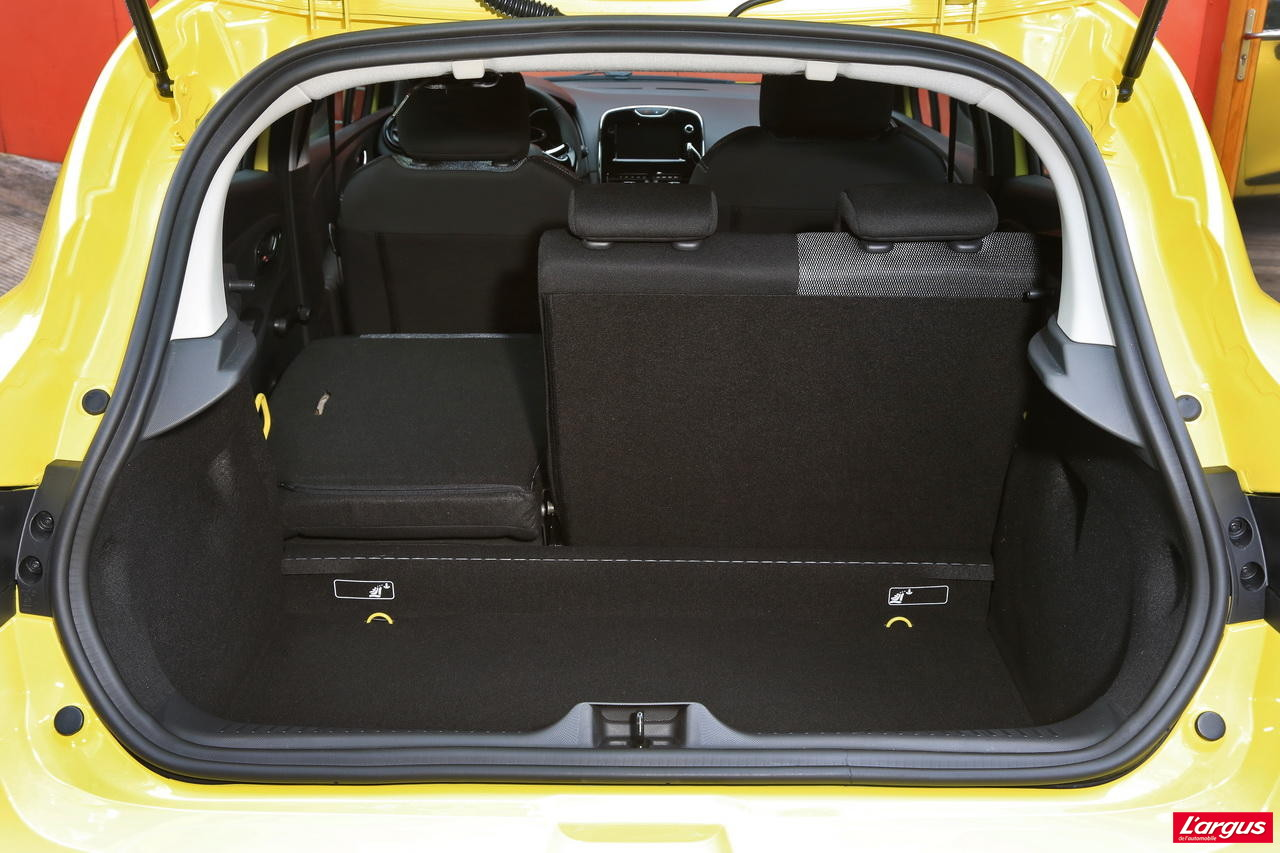 renault clio peugeot 208 politiques divergentes photo 46 l 39 argus. Black Bedroom Furniture Sets. Home Design Ideas
