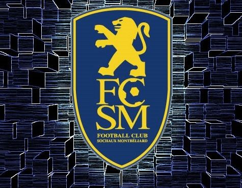 Le foot ball Club de Sochaux orphelin de Peugeot