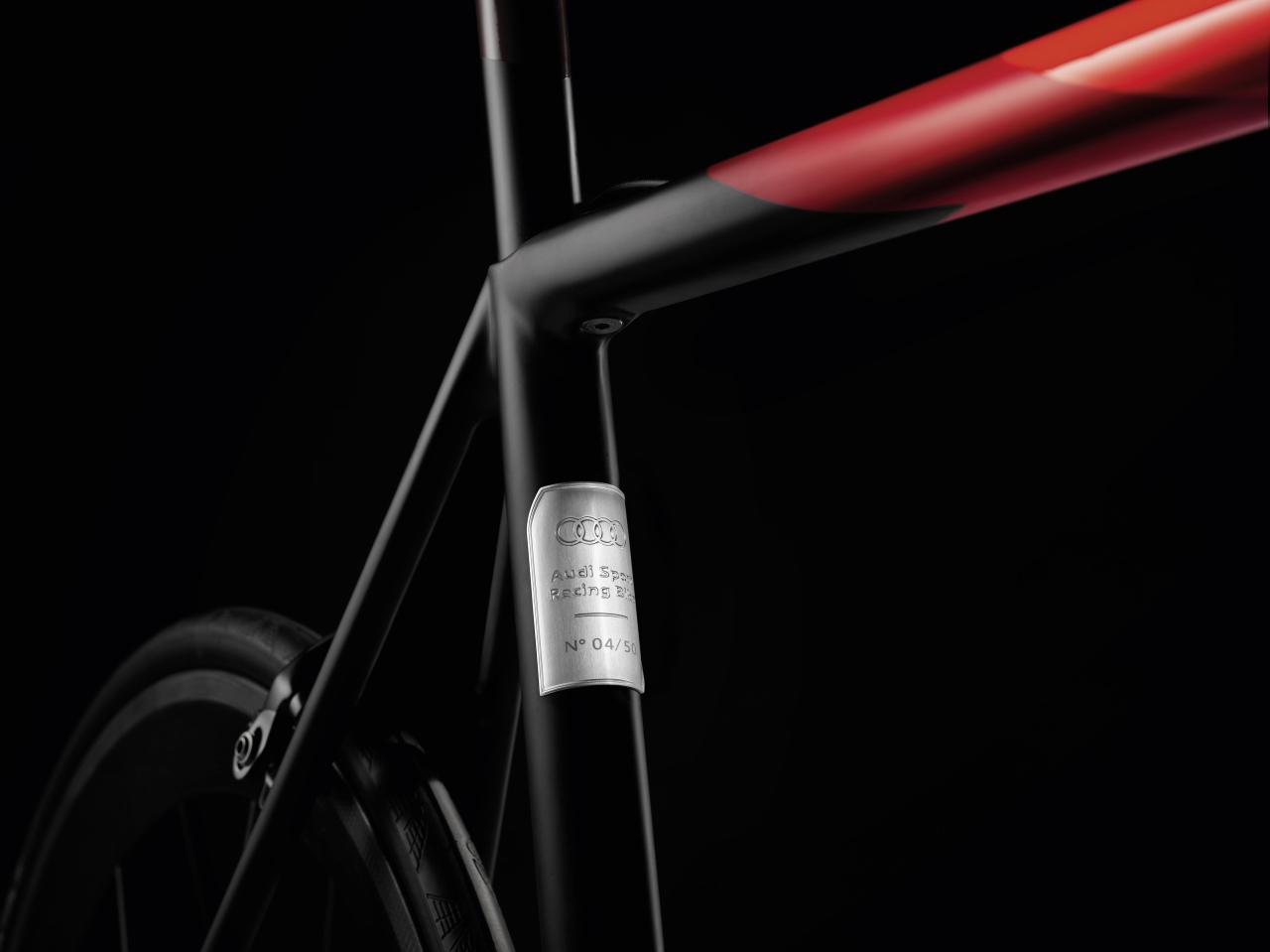 audi sport racing bike le v lo d 39 exception d 39 ingolstadt photo 2 l 39 argus. Black Bedroom Furniture Sets. Home Design Ideas