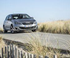 Peugeot 308 F�line grise encadr� par de la v�g�tation vue avant droite