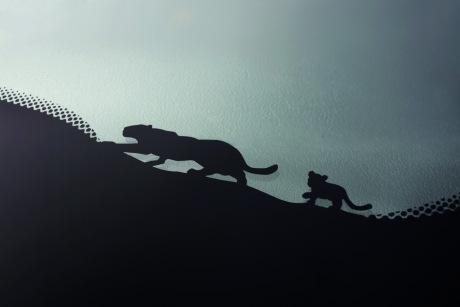 Jaguar e pace infos et photos officielles du suv compact l 39 argus - Bebe du jaguar ...