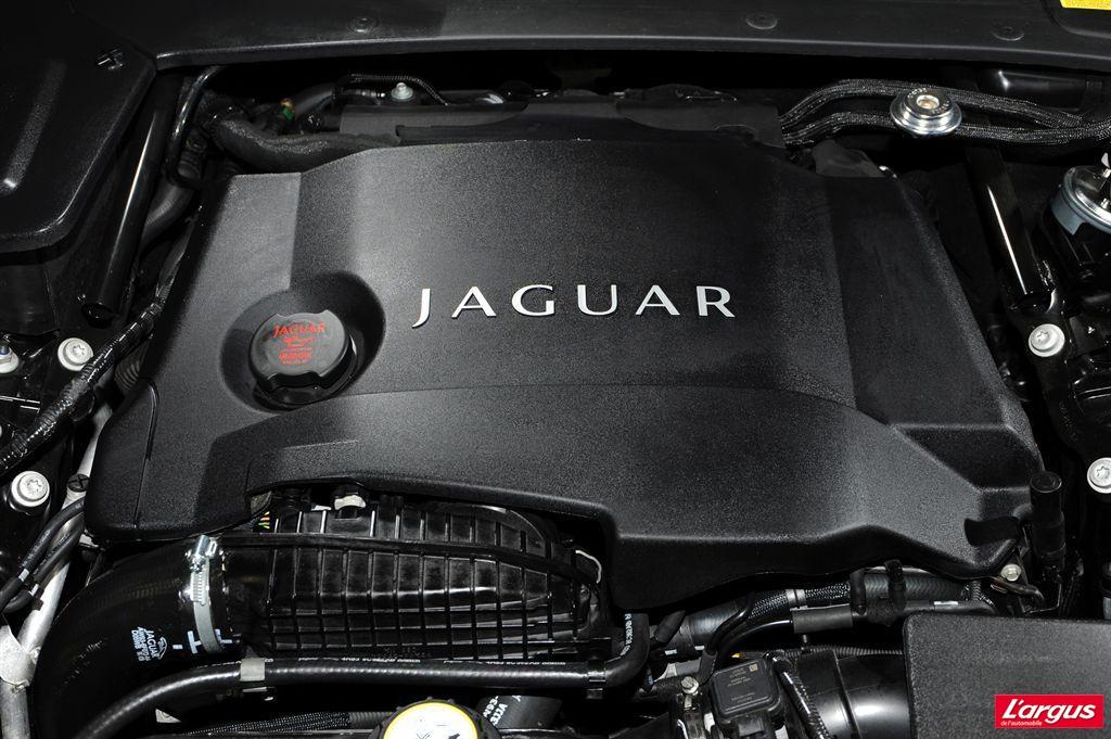 jaguar xf laquelle choisir. Black Bedroom Furniture Sets. Home Design Ideas