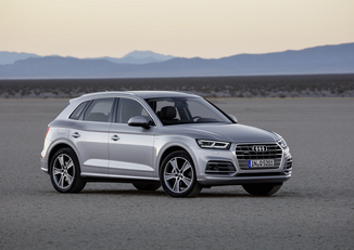 AUDI Q5 2.0 TDI 190ch Business Executive quattro